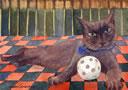 Simon - I just don't want to play ball, okay?