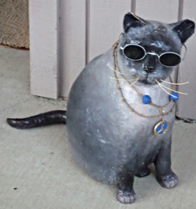Cool_hipfat_cat
