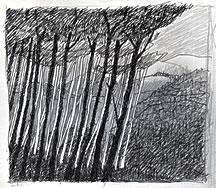 beginning_sketch