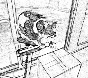 oops_dropped-the-ball2_resi