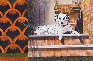 orbetellodalmatian_jolley_blog